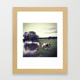 Horse by a moat Framed Art Print