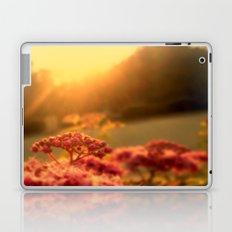 Pink bulb in the Sunrise Laptop & iPad Skin
