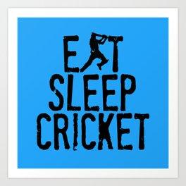 Eat Sleep Cricket Art Print