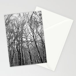 Beneath The Winter Trees Stationery Cards