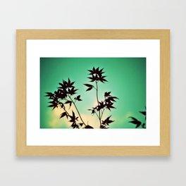 jap maple Framed Art Print