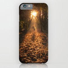 Autumn Fantasy : Let the Light Guide You Slim Case iPhone 6s
