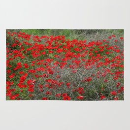 Beautiful Red Wild Anemone Flowers In A Spring Field  Rug