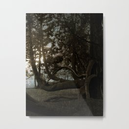 The Man in the Tree. Metal Print