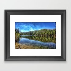 Big Bear. Framed Art Print