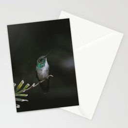 Versicolored Emerald Hummingbird Stationery Cards