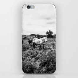Irish Horses in Black and White - Holga photograph iPhone Skin