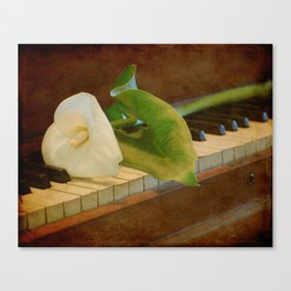Sweet Music Canvas Print