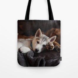 Dog by Mark Zamora Tote Bag