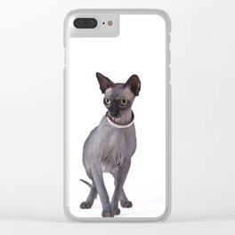 Canadian sphinx cat / Sphynx Clear iPhone Case
