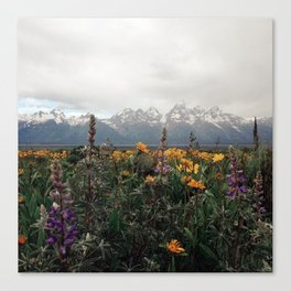 Wildflowers and Mountains - Summer in the Tetons Canvas Print
