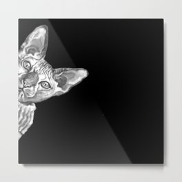 Sneaky Sphynx Cat Black and White Metal Print