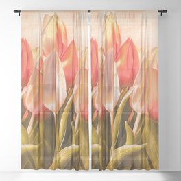 Tulips From Amsterdam Sheer Curtain