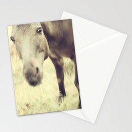 Munching Out Stationery Cards