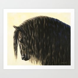 Black Friesian Draft Horse Art Print