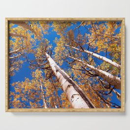 Aspen Trees Against The Sky In Crested Butte, Colorado Serving Tray