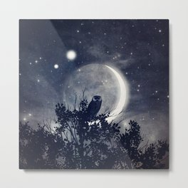 A Night With Venus and Jupiter Metal Print