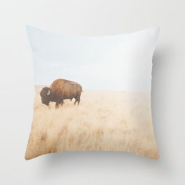 American Icon II Throw Pillow