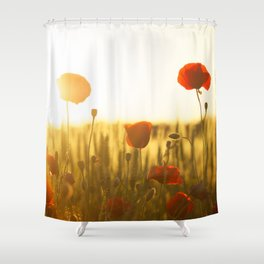 Sunset tulipe Shower Curtain