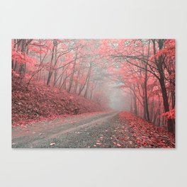 Misty Forest Road - Tickle Me Pink Canvas Print