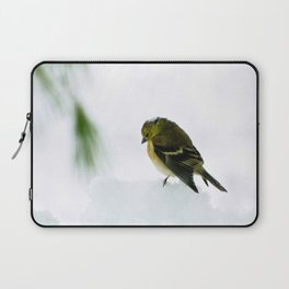 Mourning Prayer (Goldfinch) Laptop Sleeve