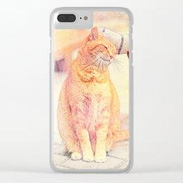 Cute Cat in Hallstatt Clear iPhone Case