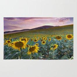 Wonderful Sunflowers. Pink Sunrise Rug