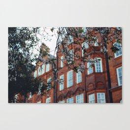 London Blossom Canvas Print