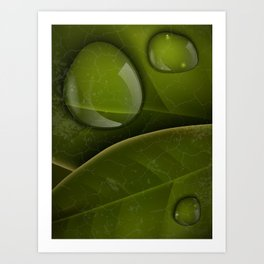 dew drops on green leaves Art Print