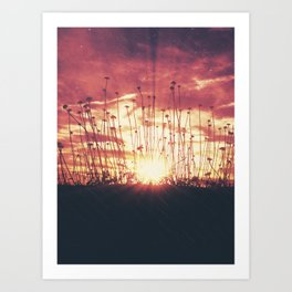 Arise and Shine Art Print