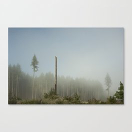Hawk Forest Canvas Print
