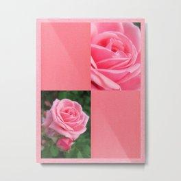 Pink Roses in Anzures 2 Blank Q11F0 Metal Print