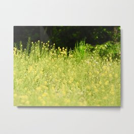 andorra meadow Metal Print