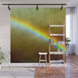 in rainbows Wall Mural