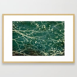 boughs Framed Art Print