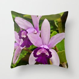 Cattleya Orchid Throw Pillow