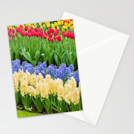 Vibrant flowerbed spring flower park with hyacinth and tulips Stationery Cards