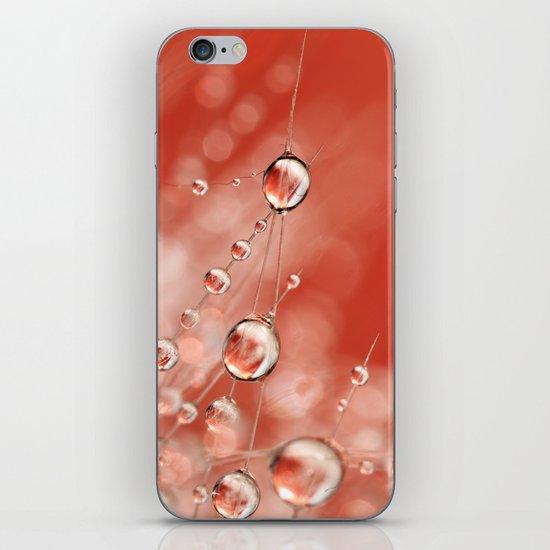 Cactus Rose Drops iPhone & iPod Skin