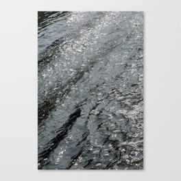 waters no.2 Canvas Print