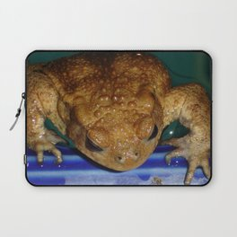 Bufo Bufo Clinging To The Edge Of A Swimming Pool Laptop Sleeve