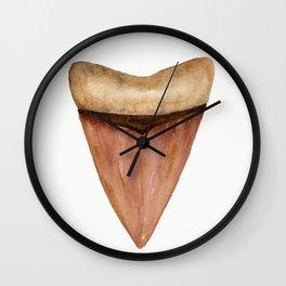 Copper Shark Tooth Watercolor by Liz Ligeti Kepler Wall Clock