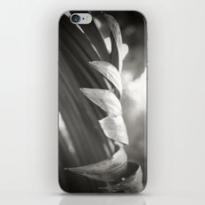 Catching the Light iPhone & iPod Skin