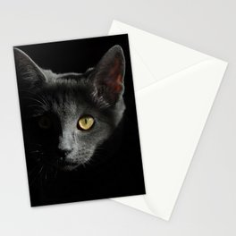Cat Animals Portrait Of Cat Face Black Stationery Cards