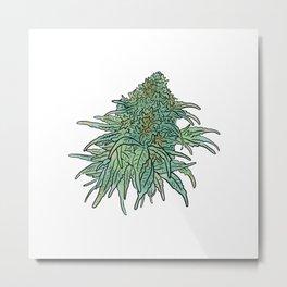 Weed Metal Print