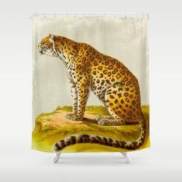 Leopard Henri Milne-Edwards, Alphonse Milne-Edwards, Hurt, illustration. - 1868 Shower Curtain