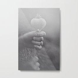 Garlic Bulb Metal Print
