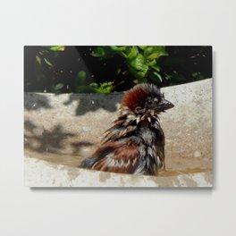 Bath time! Metal Print