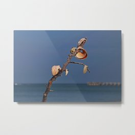 Dangling Doubts- horizontal Metal Print