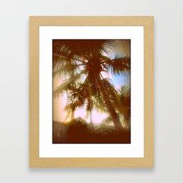Sun Glare Palms Framed Art Print