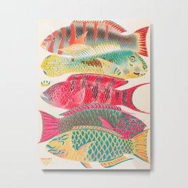 Parrot Fishes Vintage Sealife Illustration Metal Print